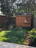 Planed cedar palmerston shed plans  6' x 8' in a garden with cedarroof as seen from the front. ID number243924